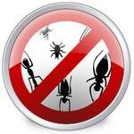 Централизованная антивирусная защита
